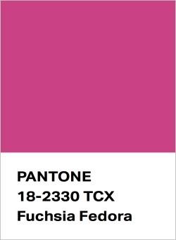 Palette of 2021